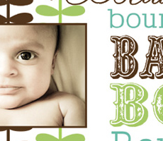 Baylor's Birth Announcement
